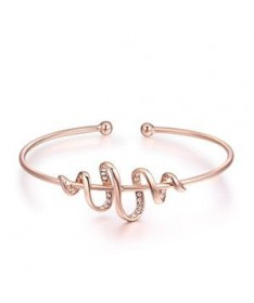 Bracelet Jonc Cristal Serpent